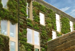 immobilier-durable-environnement-ecologie
